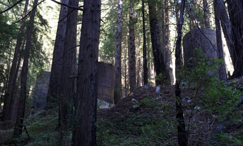 Roadblocks & Waterfalls: Big Sur, California - Gallery Slide #6