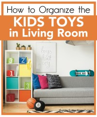 Organize Toys In Living Room - [peenmedia.com]