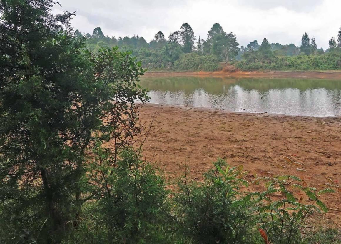 Photo of dried up Laguna Guarne in Parque Arvi