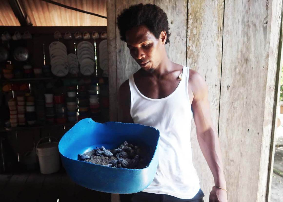 Dario at Mama Orbe's holding baby turtles in bucket