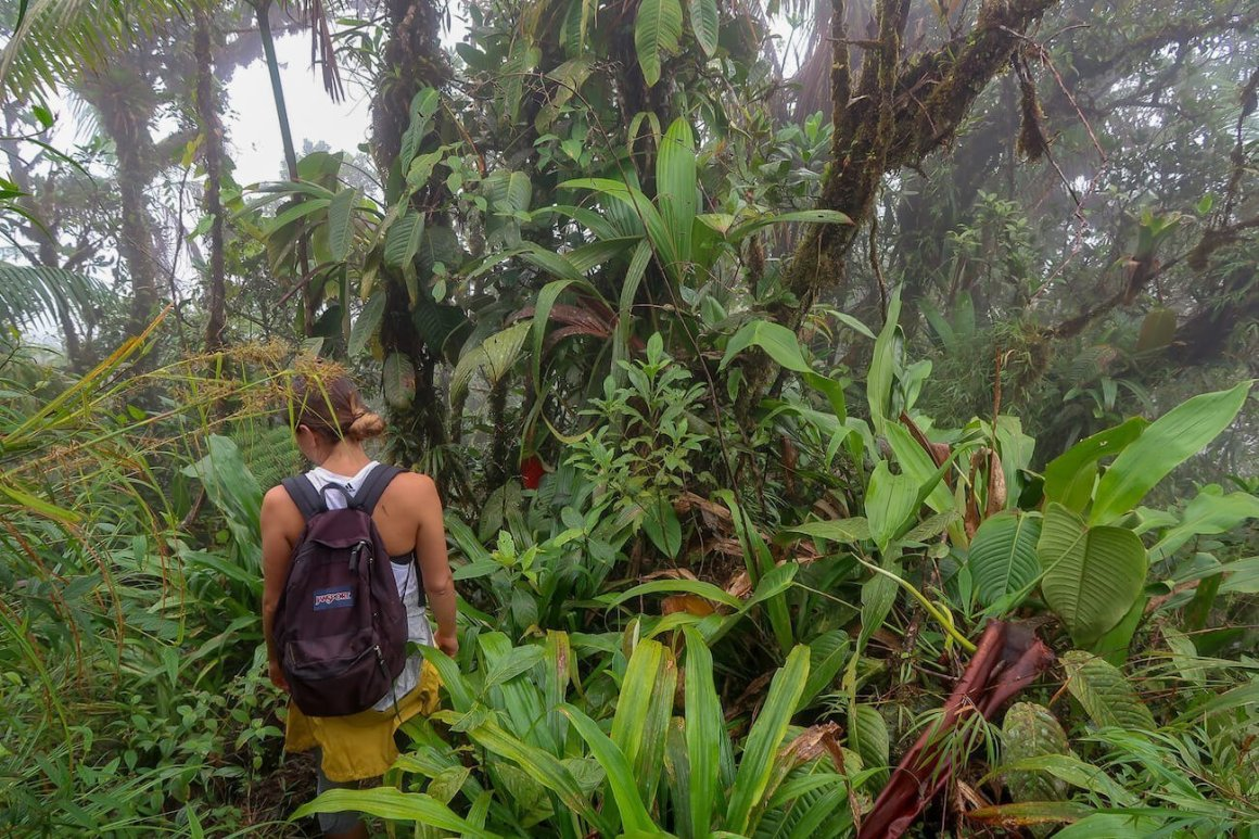 Kim not following any guidebook or blog and getting lost in the jungle