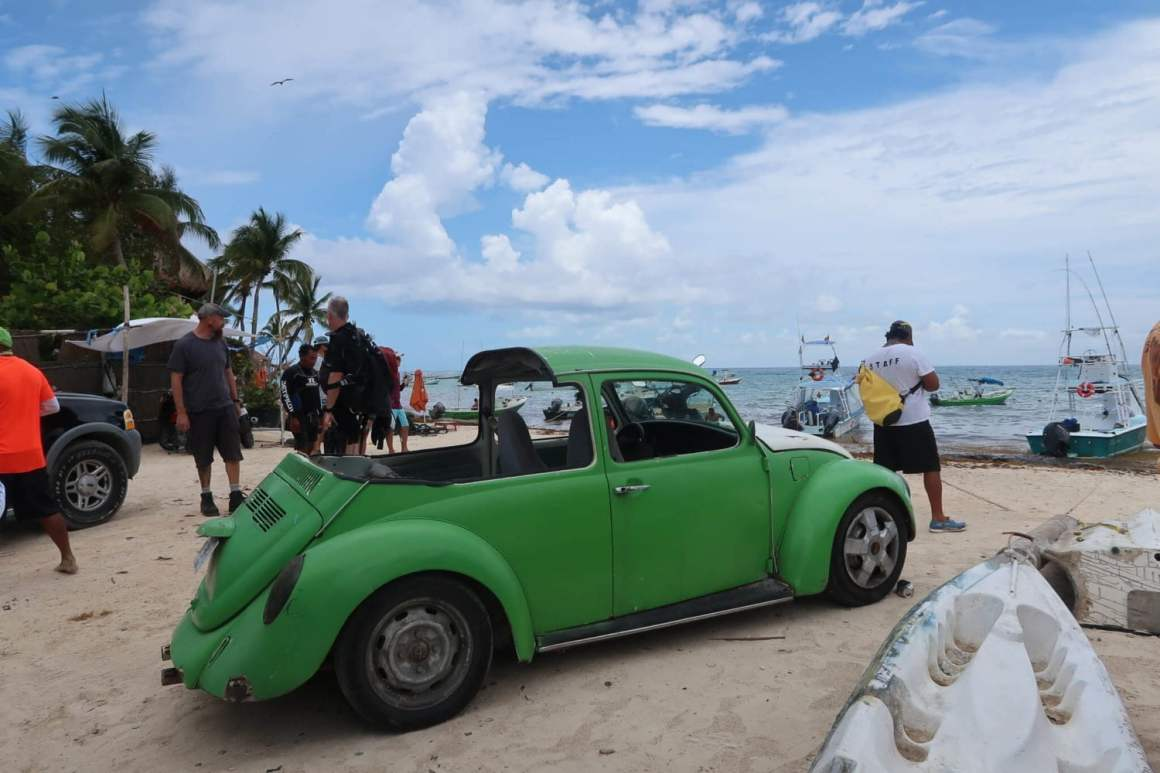 Beetle on Playa del Carmen's beach.