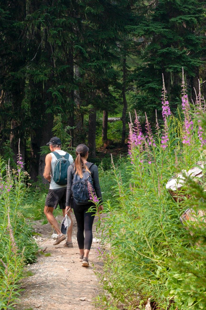hiking past flowers on first part of trail