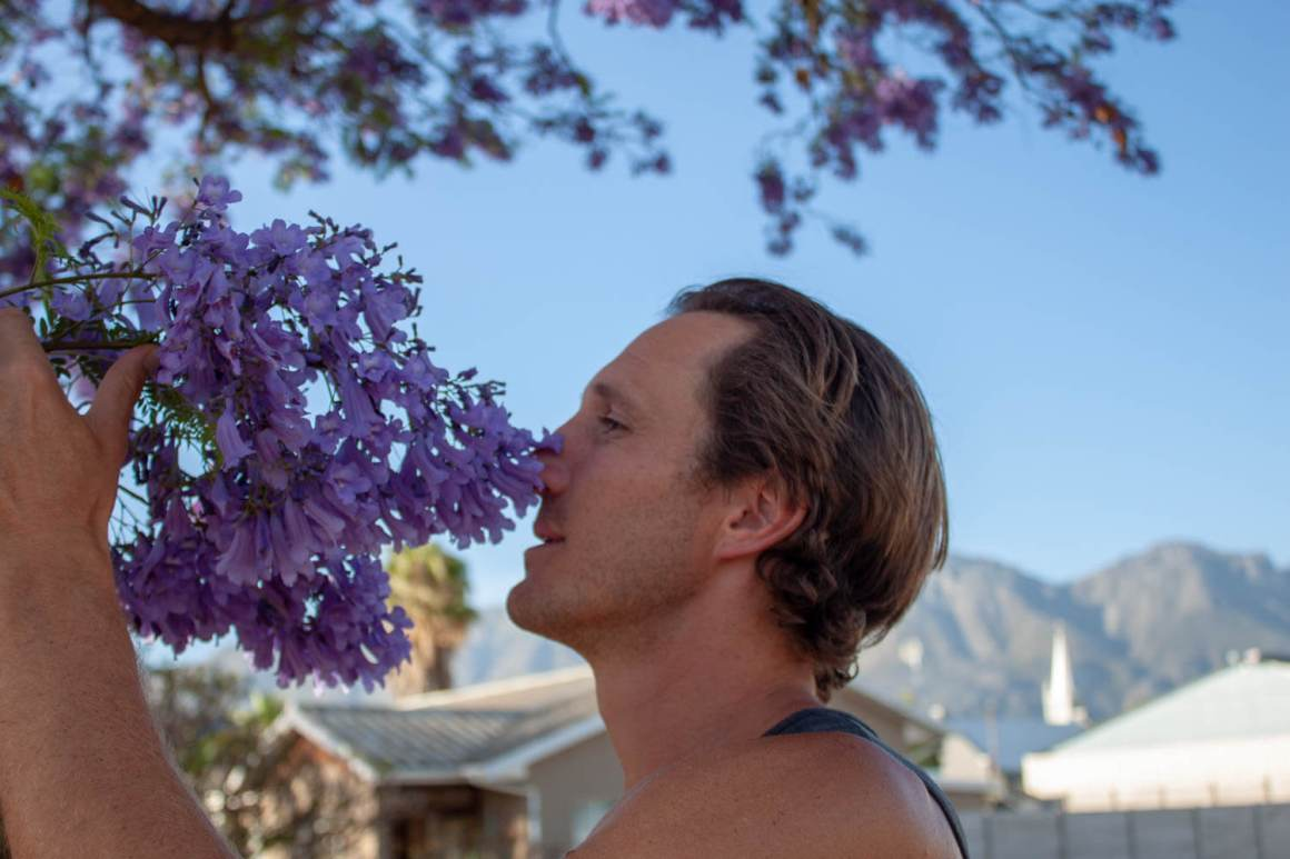 Smelling the jacarandas