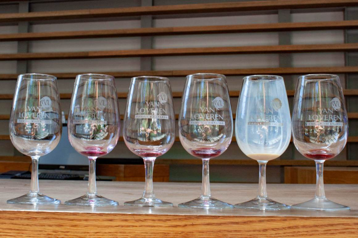 Line-up of empty tasting glasses at Van Loveren winery