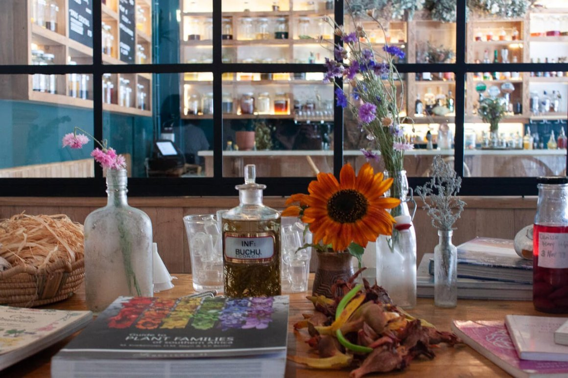 botanical cocktail class setup with veld & sea with books and tinctures