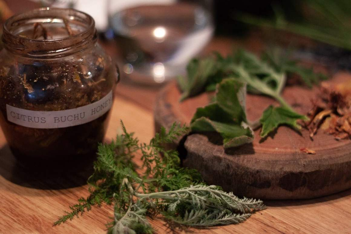 Plate with fynbos and jar of buchu honey from Veld & Sea