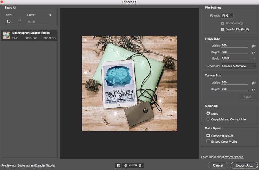 Photoshop CC screenshot of export as file settings