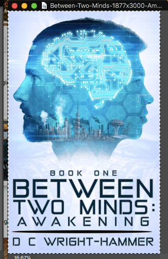 Adobe Photoshop screenshot of selected Between Two Minds book cover