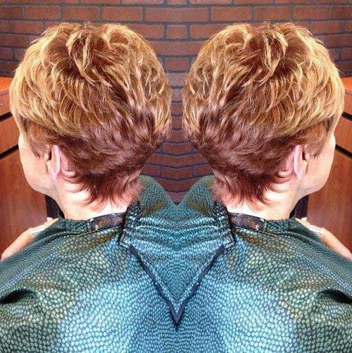 Short-Hairstyle-for-Women-Over-70-with-Fine-Hair Best Short Haircuts for Older Women