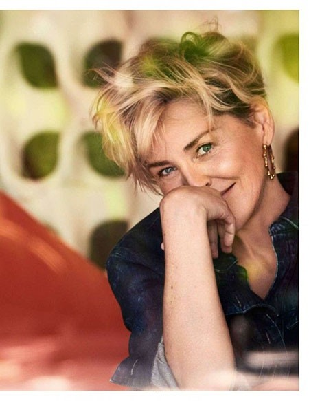 Sharon-Stone-Short-Hairtyles New Sharon Stone Short Hairstyles