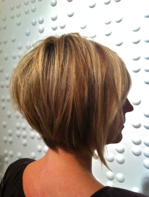 Back-View-of-Layered-Bob-Hairstyle Chic Short Cuts You Should Not Miss - Short Hair Trends for 2019