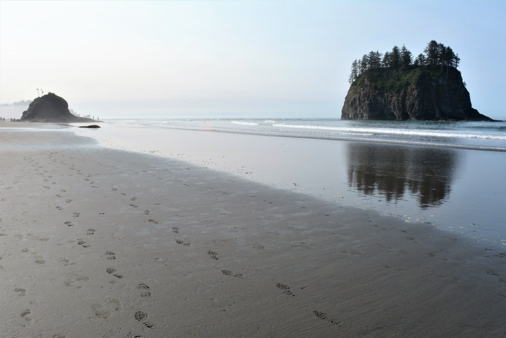Olympic National Park things to do