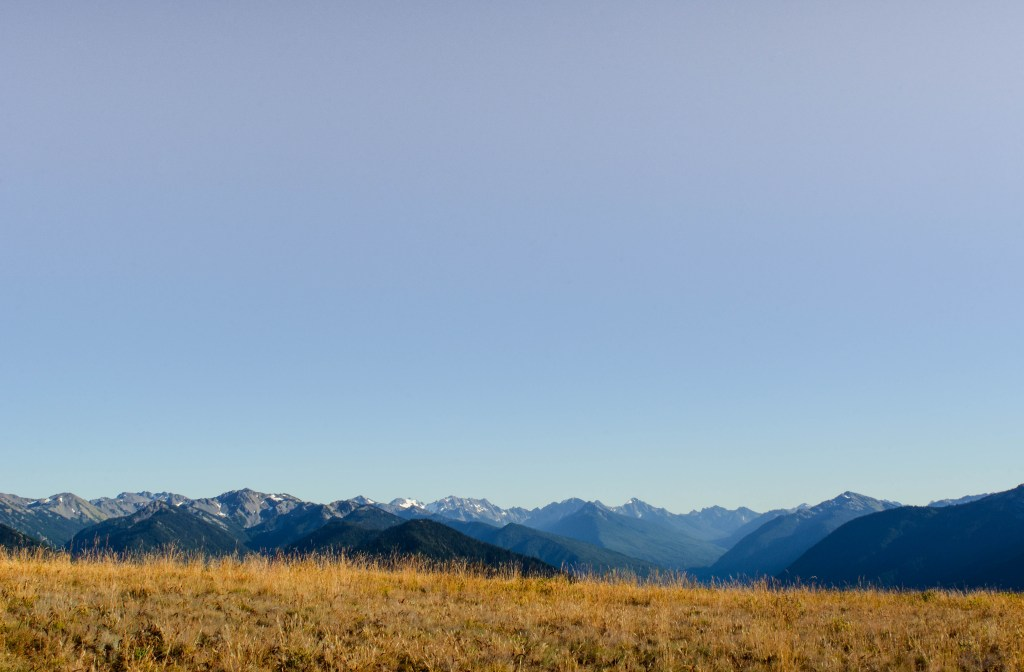 diverse faces of Olympic National Park