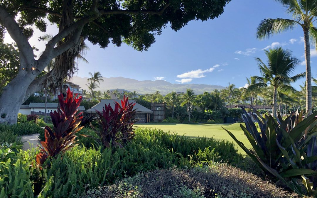 Wailea Beach Resort: Review