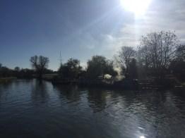 cambridge morning run - 1 (2)