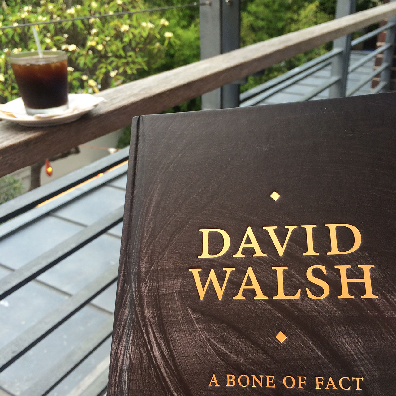david walsh bone of fact