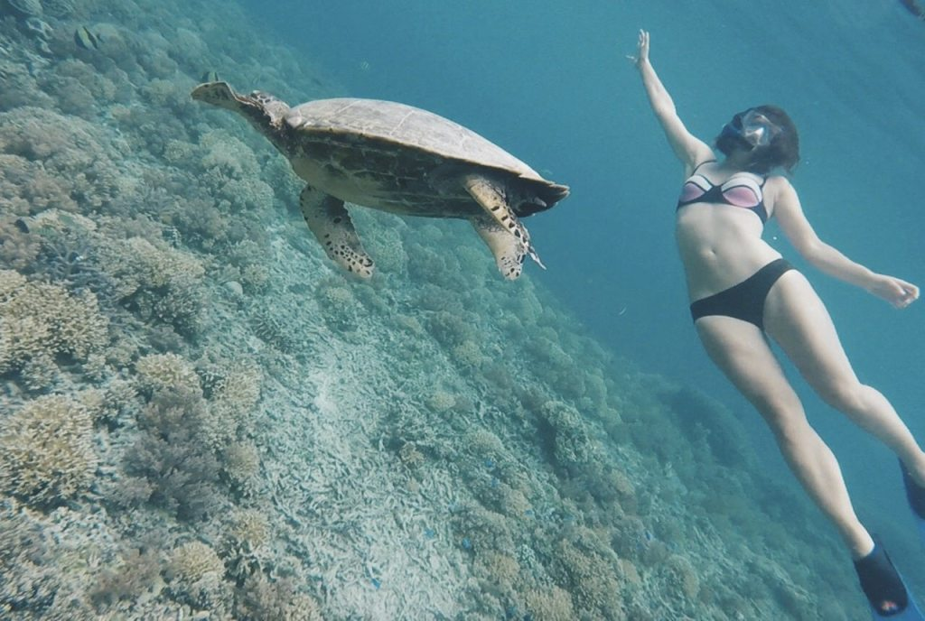 Gili T Luxury Vila Ombak Bali Beach Accommodation Swimming Sea Turtles