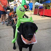 dog_w_alien