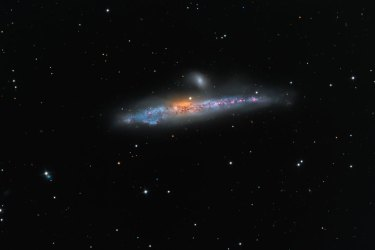 The Universe Whale Galaxy