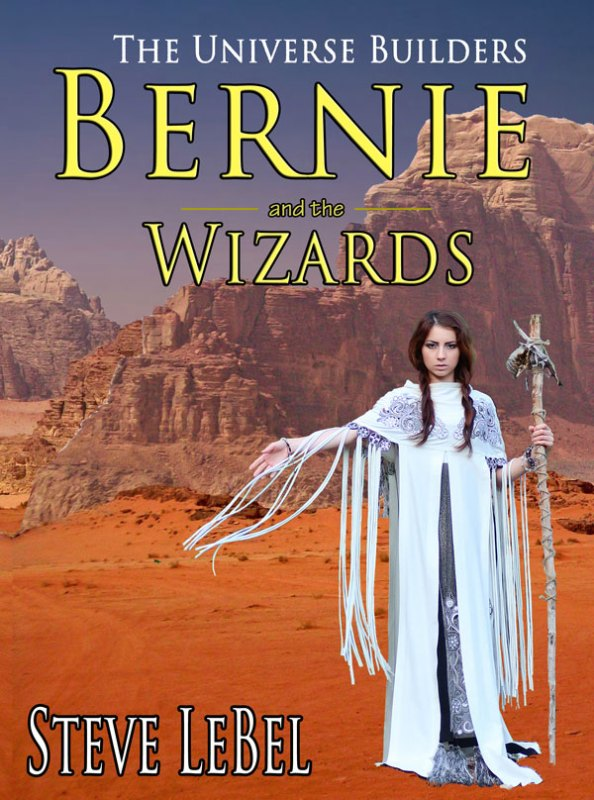 Bernie and the Wizards