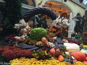 Bellagio_FallDecoration
