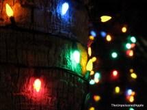 5 Free Christmas Time Gaylord