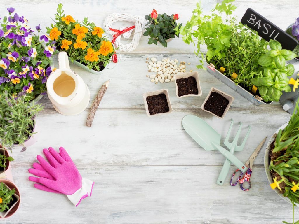 seed set for the garden: affordable DIY Christmas gifts