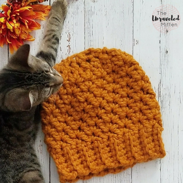 Wildwood Chunky Beanie | Last Minute Christmas Gift | Free Crochet Pattern | The Unraveled Mitten
