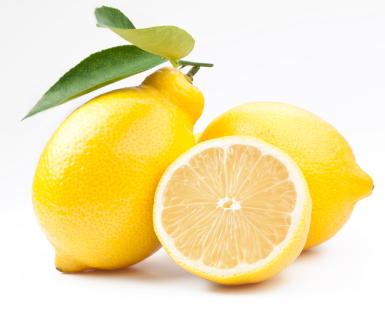 untamed fact #16 (lemon)
