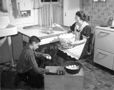 16-G-129-N-2906: Mrs. Ralph Seely of Delaware County, N.Y., weighs eggs to be marketed, so that they may be correctly graded. Her 11-year-old son, Gordon, carefully places in the crate the eggs that pass the weighing test. Forsythe, No. 1941