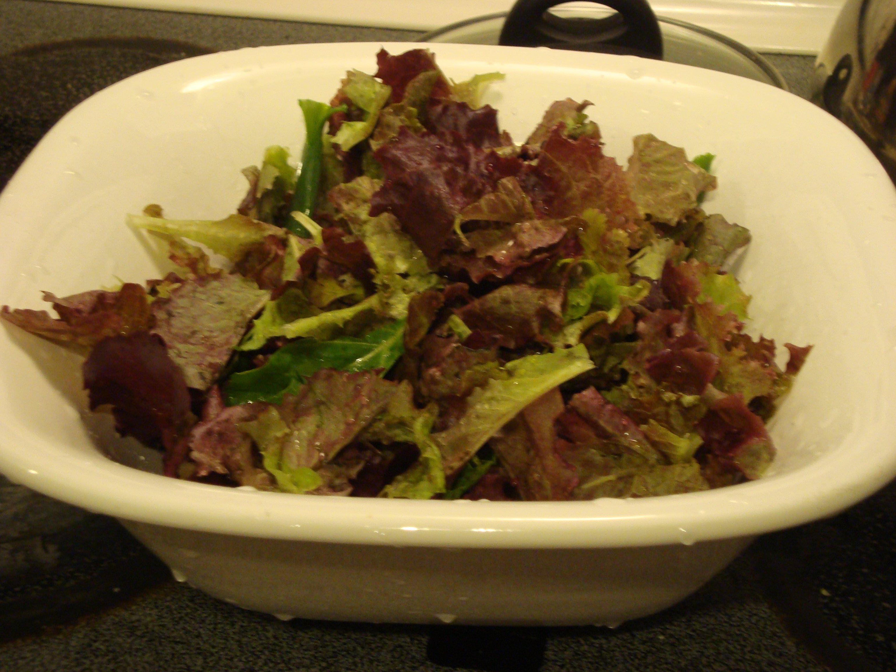 Aquaponics grown salad