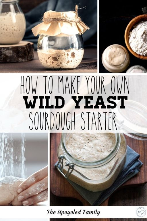 How to make your own wild yeast sourdough starter