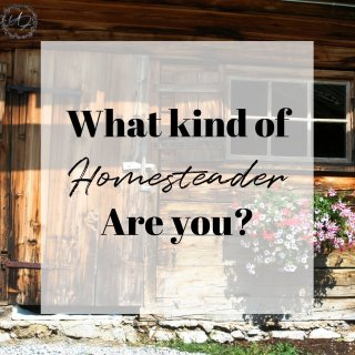 homesteader you are? Discover what kind of homesteader you are and the path to YOUR unique homestead dreams.