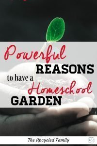 The benefits of gardening in your homeschool. Teaching kids to garden provides more than just homegrown food. Homeschool garden learning. #homeschoolgarden #learning #forkids #ideas #tips