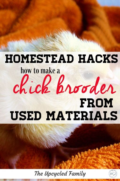 How to make a chick brooder box DIY style