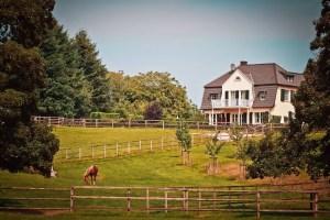 homestead quiz