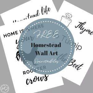 Homestead farmhouse wall art