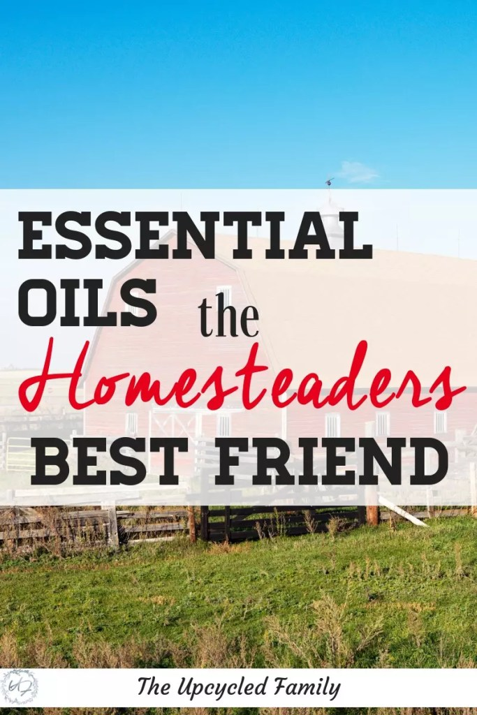 Essential oils on the homestead are essential!