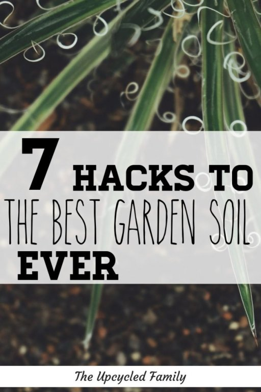 7 hacks to the best garden soil ever