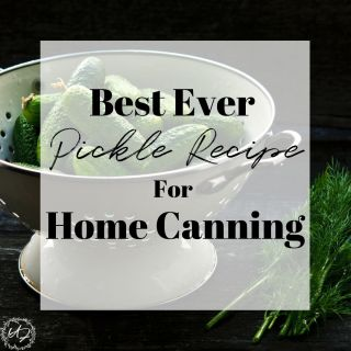 Do you love homemade pickles? This is the BEST ever Pickle Recipe, simple yet oh so delicious!
