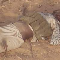 Civilian -JTF Kills 4 Female Suicide Bombers In Borno [GRAPHIC]
