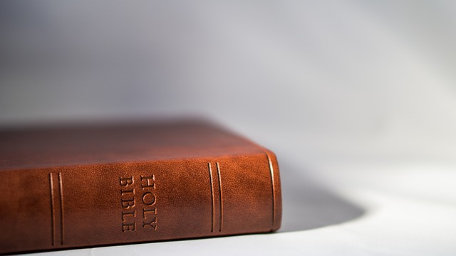 Where to start reading the Bible - New believer