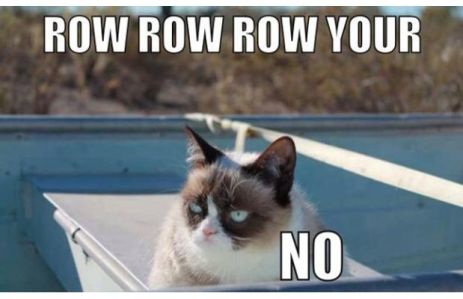 grumpy cat, the urban dater, NO. grumpy cat,