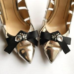 accesorii pantofi SASHaccessories sh 228