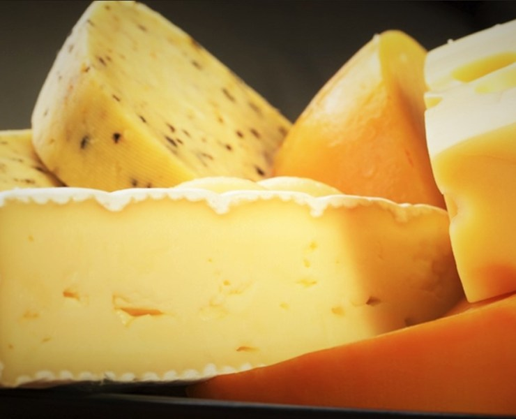 Cheese Article
