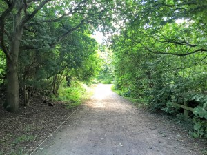 The Wirral Way - Parkgate to Gayton