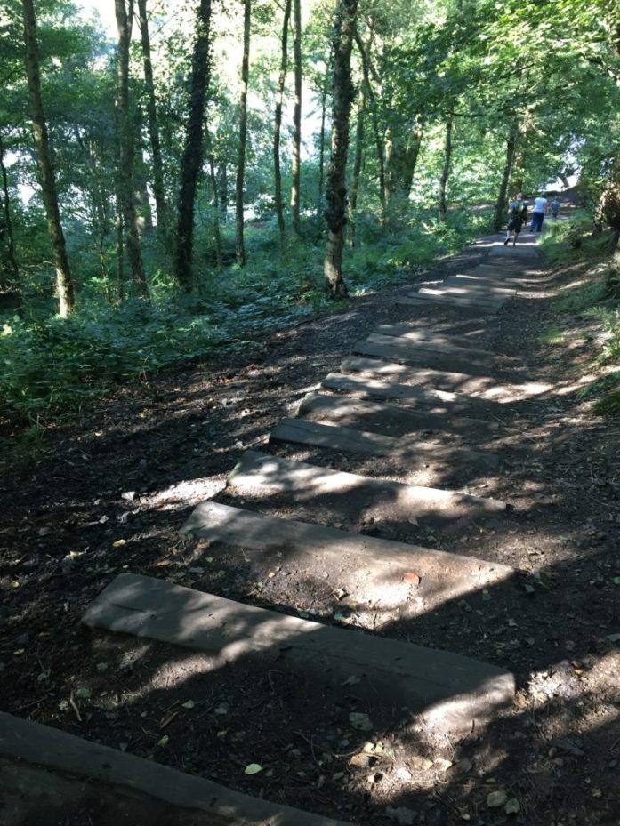 Yorkshire Sculpture Park, Wakefield | Sarah Irving | The Urban Wanderer | David Nash | Seventy-One Steps