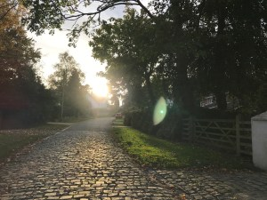 Willaston Mill Lane | Willaston, Wirral, Wirral | Cheshire | North West UK | The Urban Wanderer | Sarah Irving | Under 1 Hour from Manchester | Places to visit near Manchester | Outdoor Blogger | Manchester Blogger | Travel Blogger