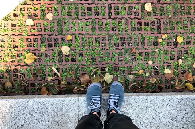 National Walking Month | May 2019